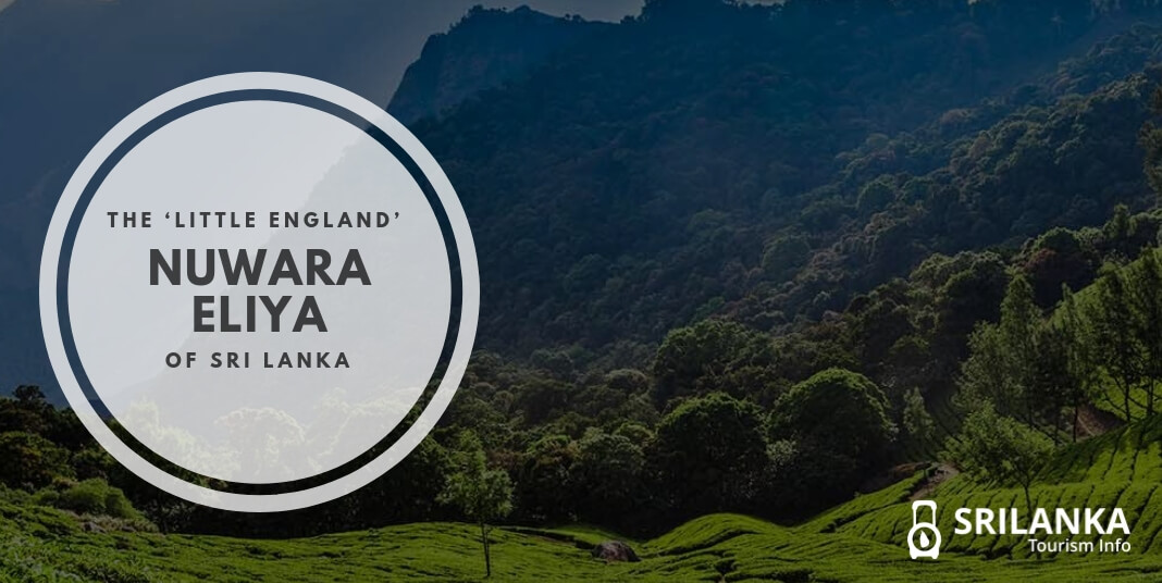 Nuwara Eliya: The 'Little England' of Sri Lanka