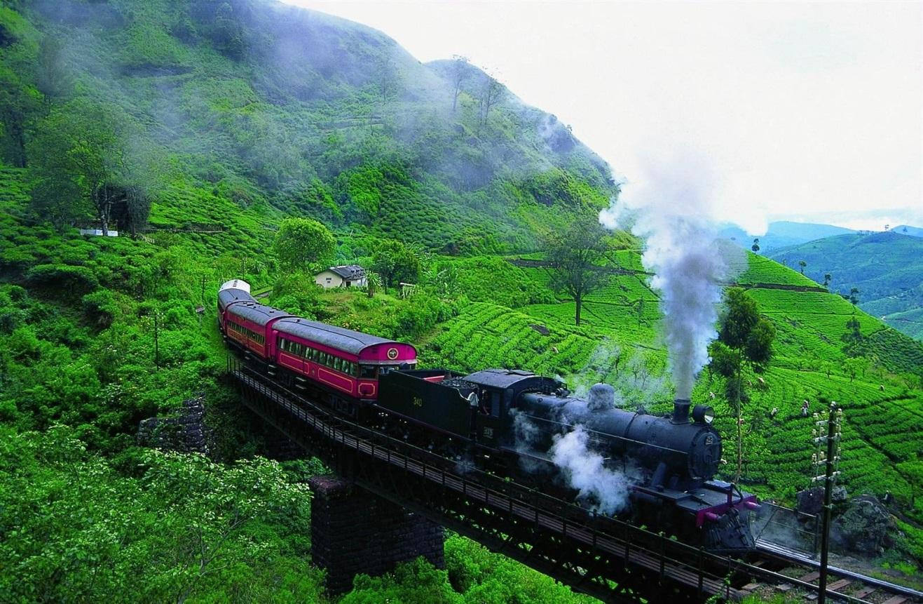 Image result for nuwara eliya by train