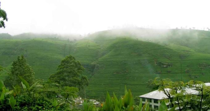 Image result for nuwara eliya cold