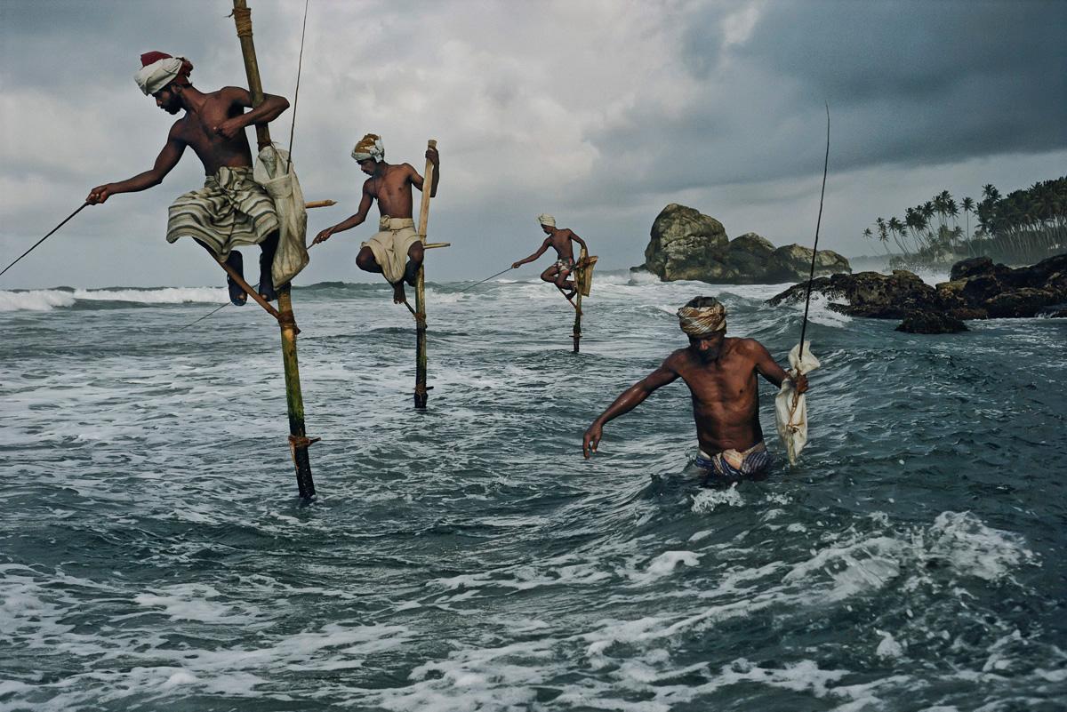 Image result for fisheries sri lanka