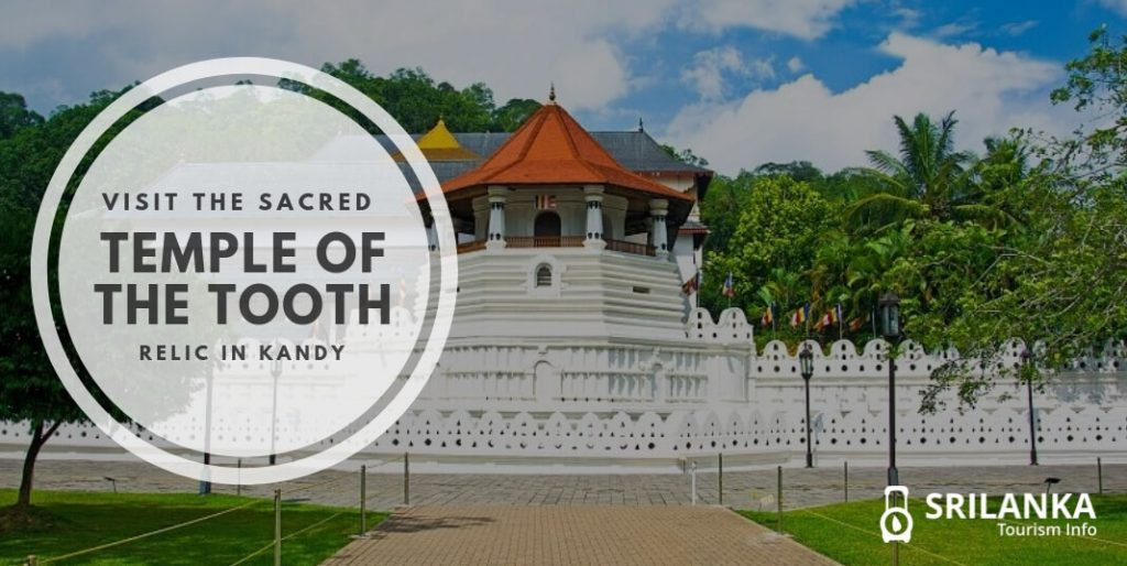 Visit the Sacred Temple of the Tooth Relic in Kandy