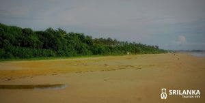 Know everything about Bentota Beach in Sri Lanka