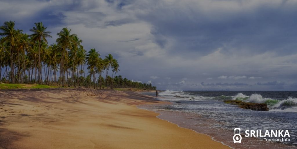 Here is why you should visit Negombo Beach in Sri Lanka at least once !
